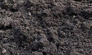 Zwarte grond, los gestort