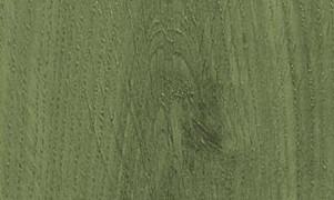 Tuindecoratiebeits transparant 767 Groen Naturel, 2500 ml