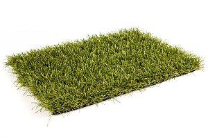 Royal Grass Sense (2 meter breed)