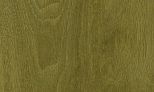 Houtdecor Verfbeits (transparant) 656 Transparant Groen, 750 ml
