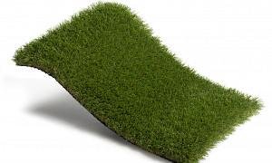 Royal Grass Bloom